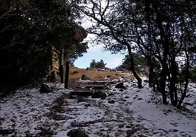 岩屋山山頂は雪が残っていました