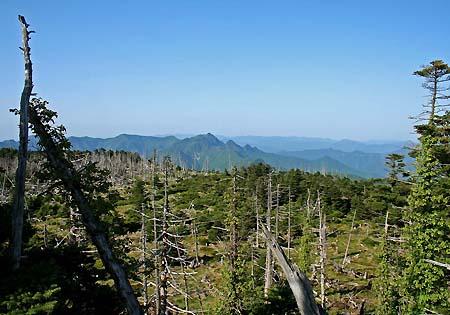 弥山山頂から山上ヶ岳を望む
