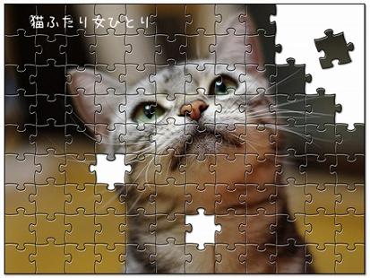 jigsaw5982088.jpg