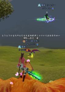 20080119181311.jpg