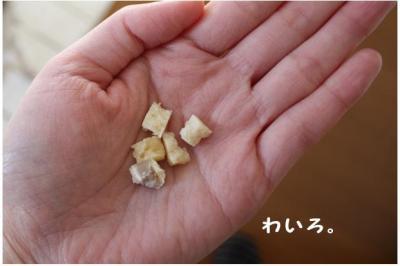 コピー (2) ~ ボーボー