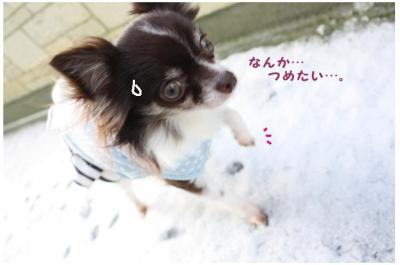 コピー (4) ~ yuki