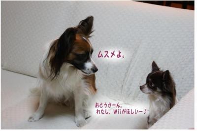 コピー (12) ~ シュシュ
