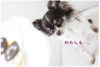 コピー (6) ~ バレンタイン