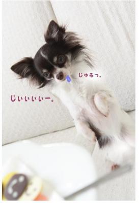 コピー (8) ~ バレンタイン