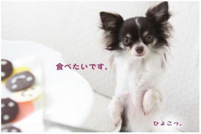 コピー (7) ~ バレンタイン