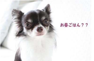 コピー (4) ~ 予想