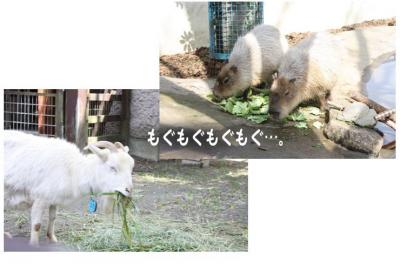 コピー (3) ~ yukina