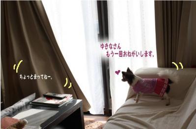 コピー (4) ~ yukina2