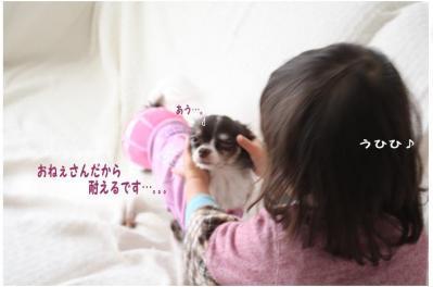 コピー (7) ~ yukina2