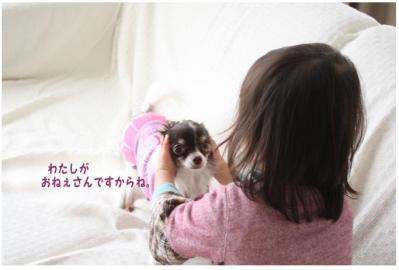 コピー (6) ~ yukina2