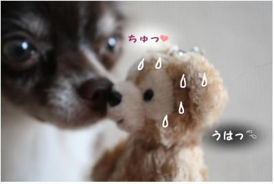 コピー (4) ~ omiya