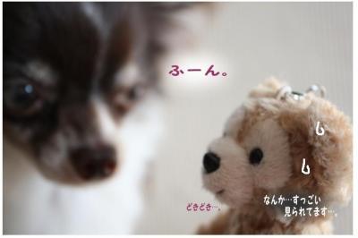 コピー (3) ~ omiya