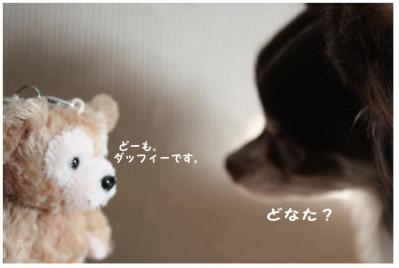 コピー (2) ~ omiya