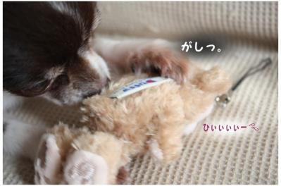 コピー (6) ~ omiya