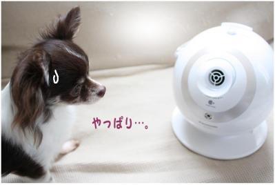 コピー (5) ~ nano