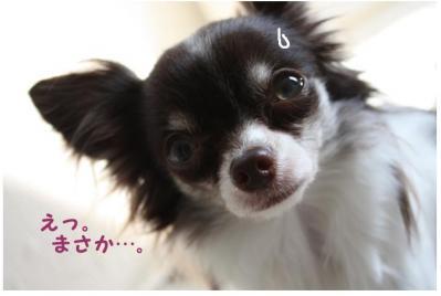 コピー (4) ~ nano