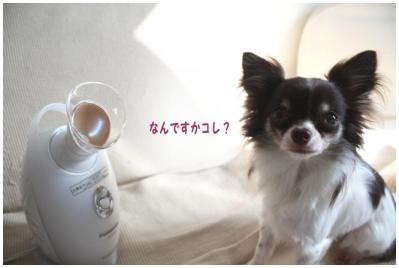 コピー (2) ~ nano