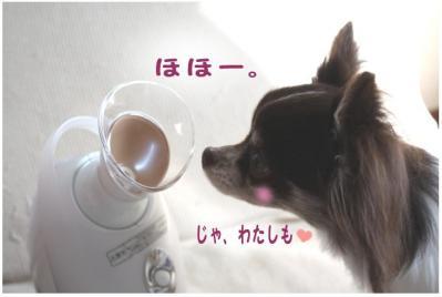 コピー (3) ~ nano