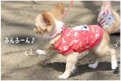 コピー (5) ~ お花見
