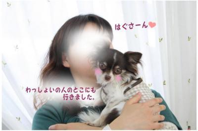 コピー (10) ~ お花見2