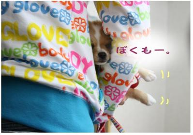 コピー (14) ~ お花見2