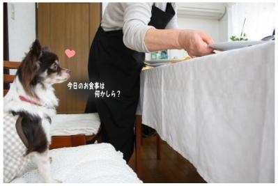 コピー ~ お花見2