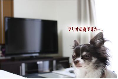 コピー (5) ~ ひかり