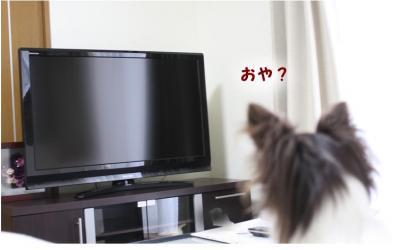 コピー (3) ~ ひかり