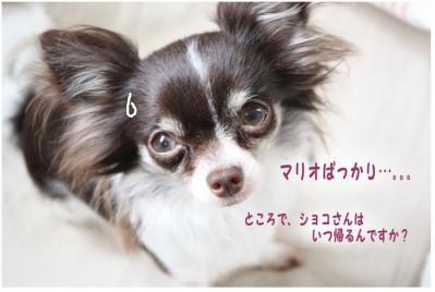コピー (11) ~ GW2