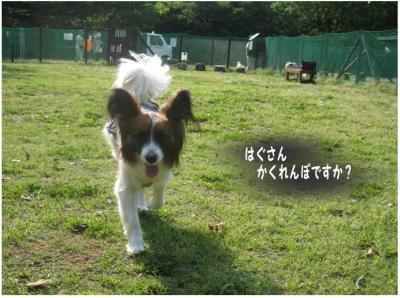 コピー (6) ~ らん
