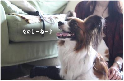 コピー (2) ~ mario