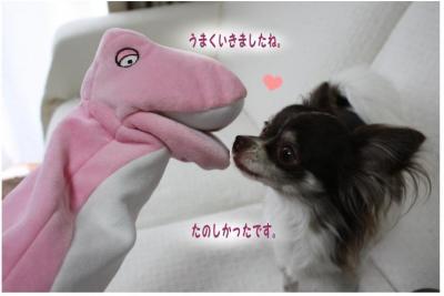 コピー (7) ~ 新入り