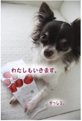 コピー (4) ~ tsubaki