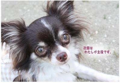 コピー (10) ~ イカダ