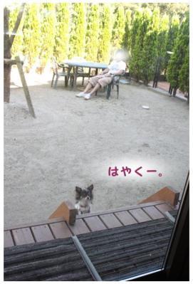 コピー (4) ~ cafe