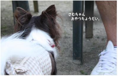 コピー (8) ~ cafe