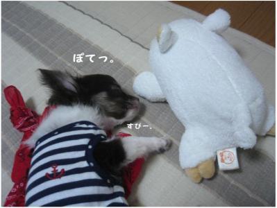 コピー (3) ~ ぶーちゃん