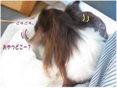 コピー (2) ~ 分身