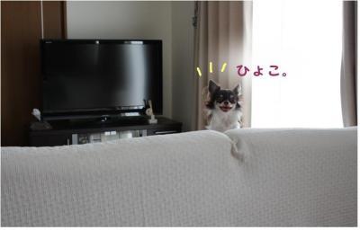 コピー (2) ~ カリカリ