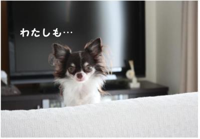 コピー (6) ~ カリカリ