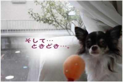 コピー (5) ~ お天気