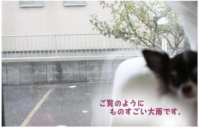 コピー (4) ~ お天気