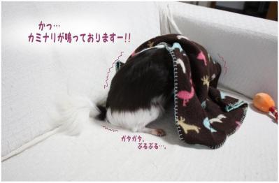 コピー (7) ~ お天気