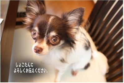 コピー (3) ~ お天気