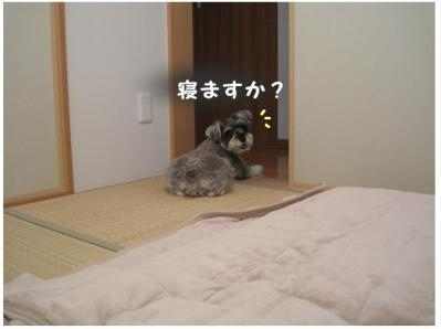 コピー (11) ~ 大阪1