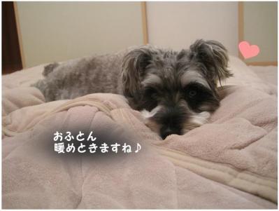コピー (13) ~ 大阪1