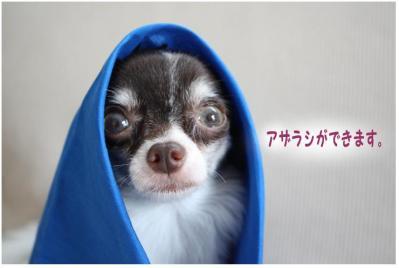 コピー (5) ~ 大阪2