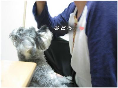 コピー (7) ~ 大阪2