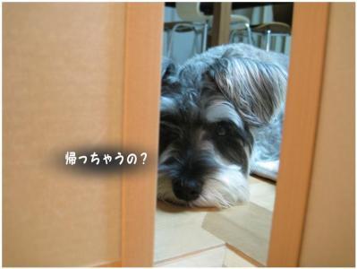 コピー ~ 大阪3